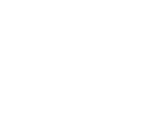 Meet Bun